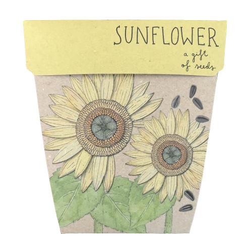 Sow 'n Sow Sunflower Gift of Seeds