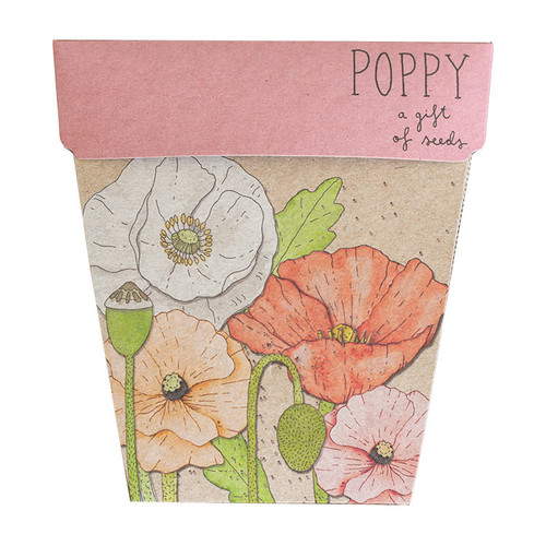 Sow 'n Sow Poppy Gift of Seeds