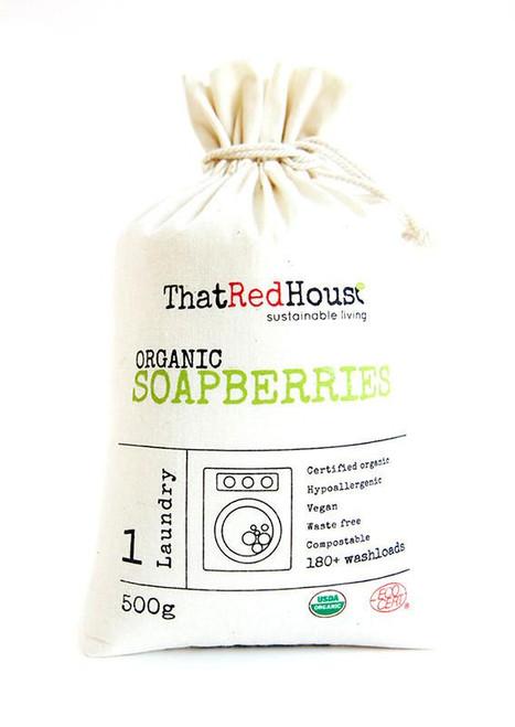 500g Organic Soapberries