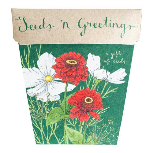 Seeds 'n Greetings Gift of Seeds