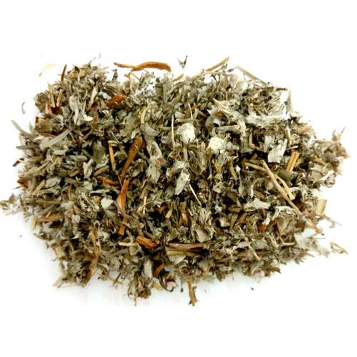 Herbs - Cinquefoil 5g packet