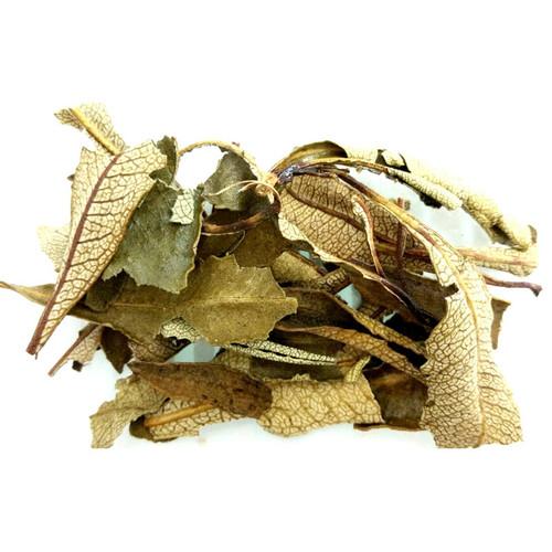 Herbs - Yerba Santa 20g packet