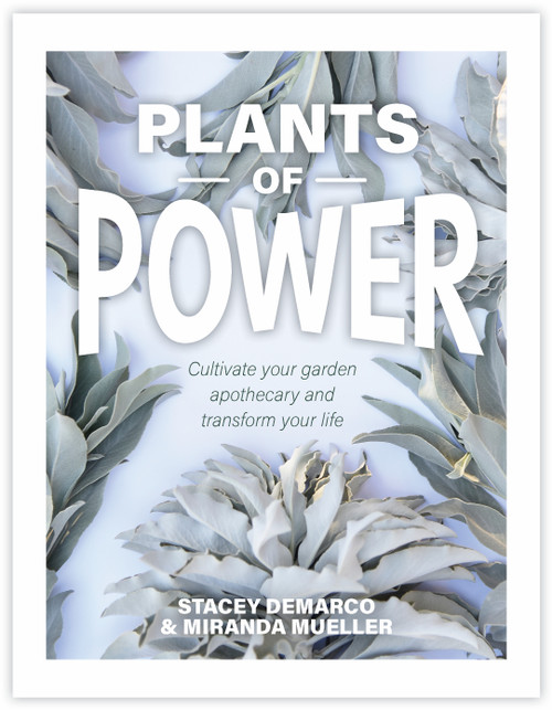 Plants of Power by Stacey Demarco and Miranda Mueller