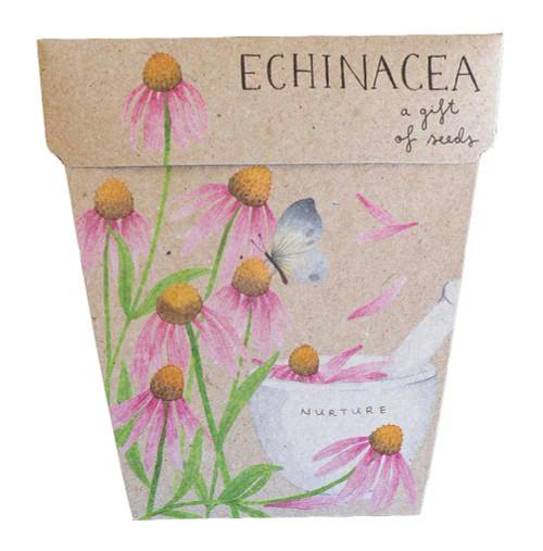Echinacea Gift of Seeds