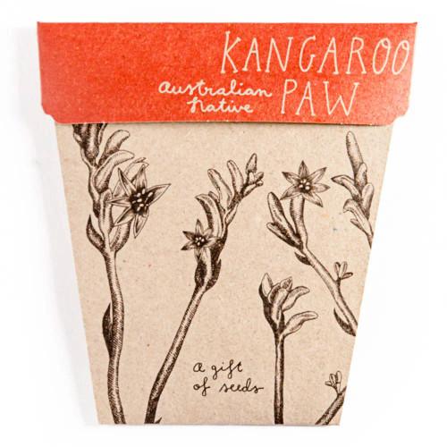 Kangaroo Paw Gift of Seeds