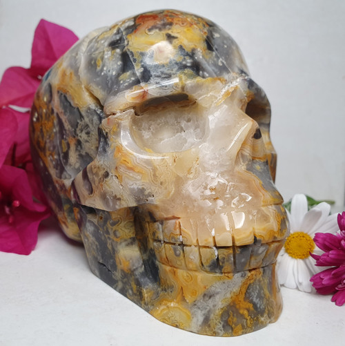 Crazy Lace Agate Skull Carving
