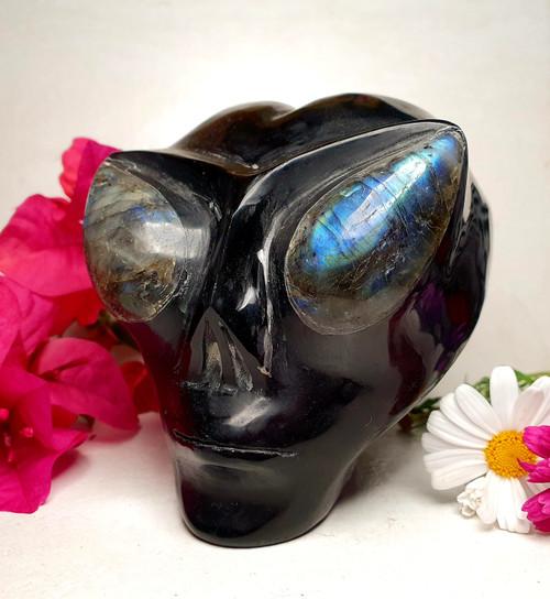 Obsidian Alien Skull with Labradorite Eyes Carving