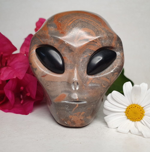 Jasper Alien Skull with Obsidian Eyes Carving
