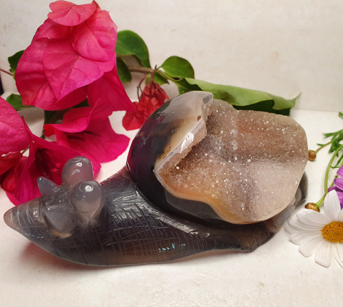 Druzy Agate Snail Carving