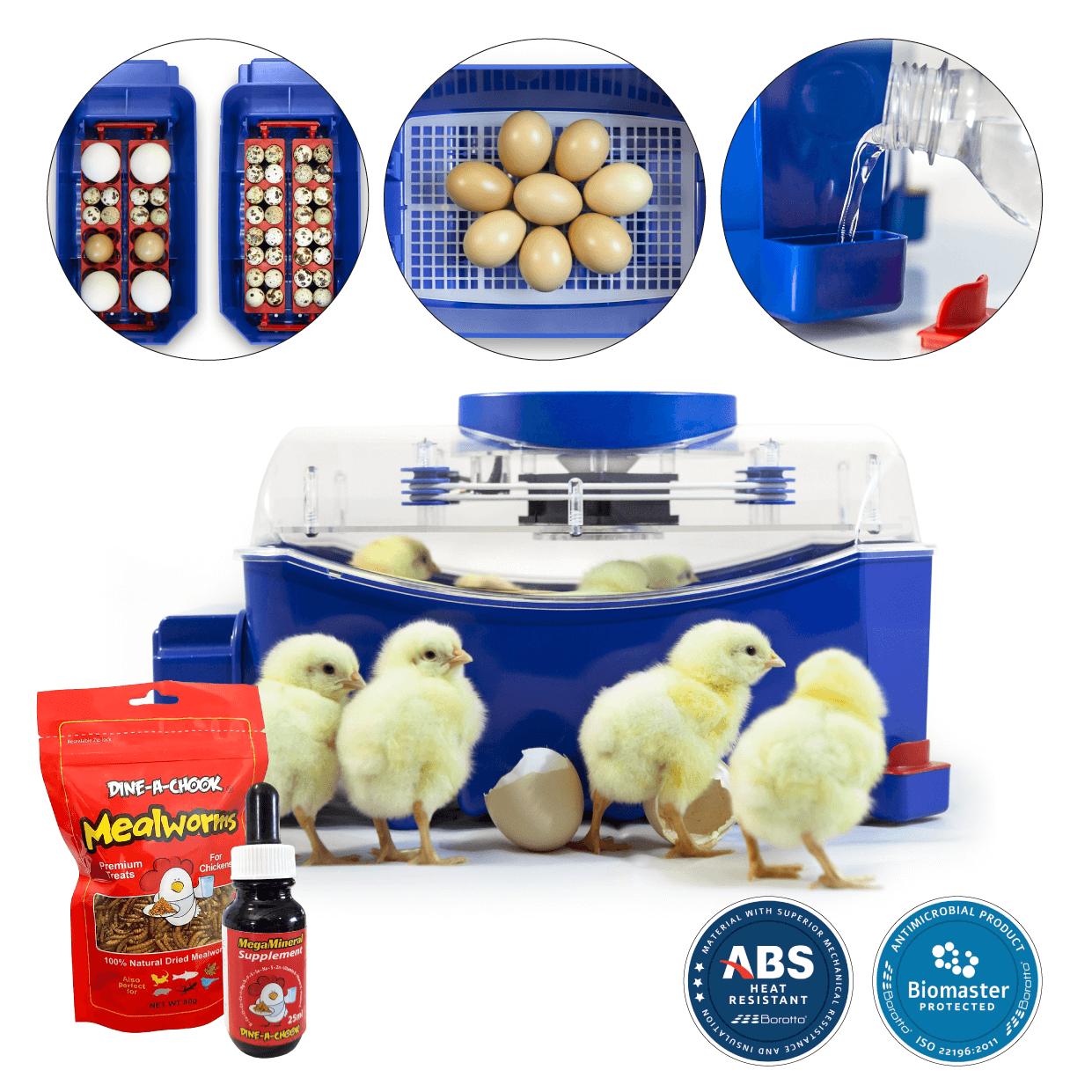 borotto-lumia-8-automatic-egg-incubator-1-.png