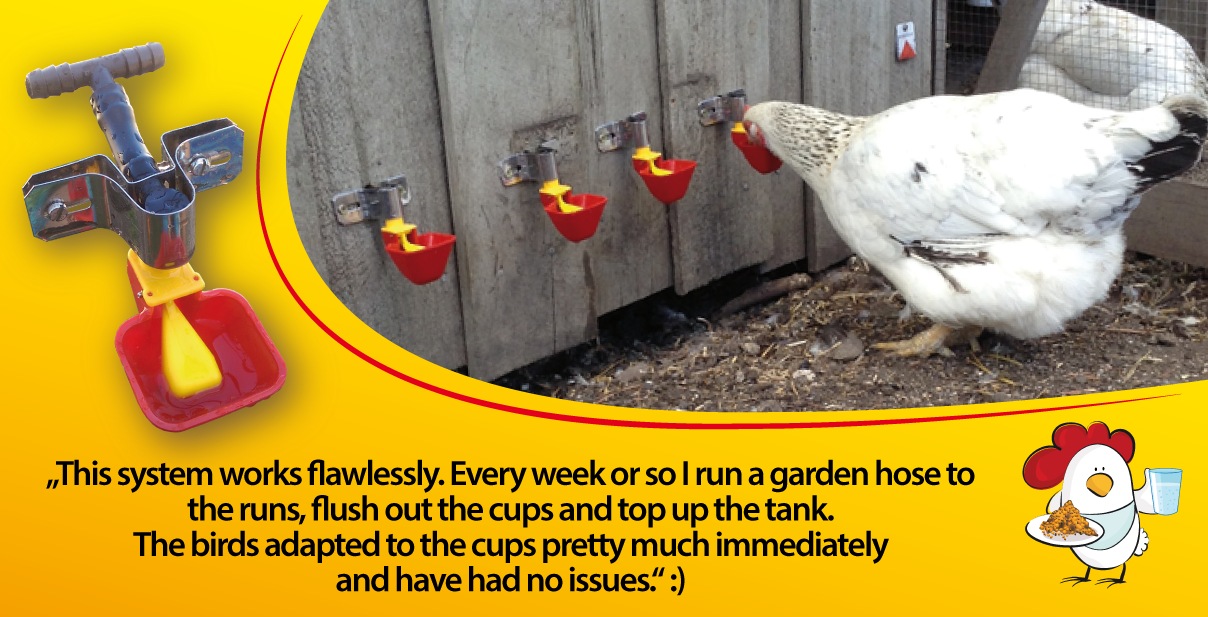 chicken-drinker-cage-or-wall-mounted-with-stainless-steel-brackets.png