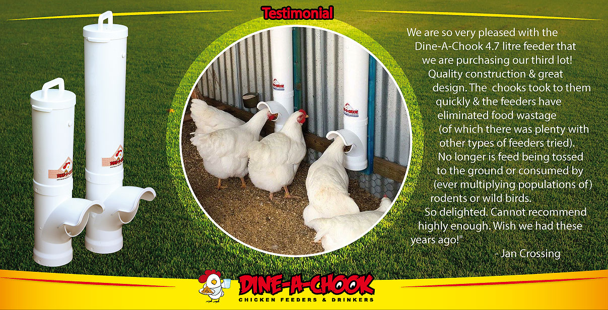 Dine A Chook Chicken feeder pvc testimonials