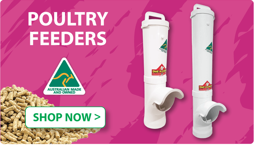 Poultry Feeders | Automatic, low waste feeders for Chickens, ducks, geese and even rabbits, Australian Made | Dine a Chook