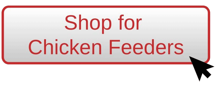 Shop for Chicken feeders