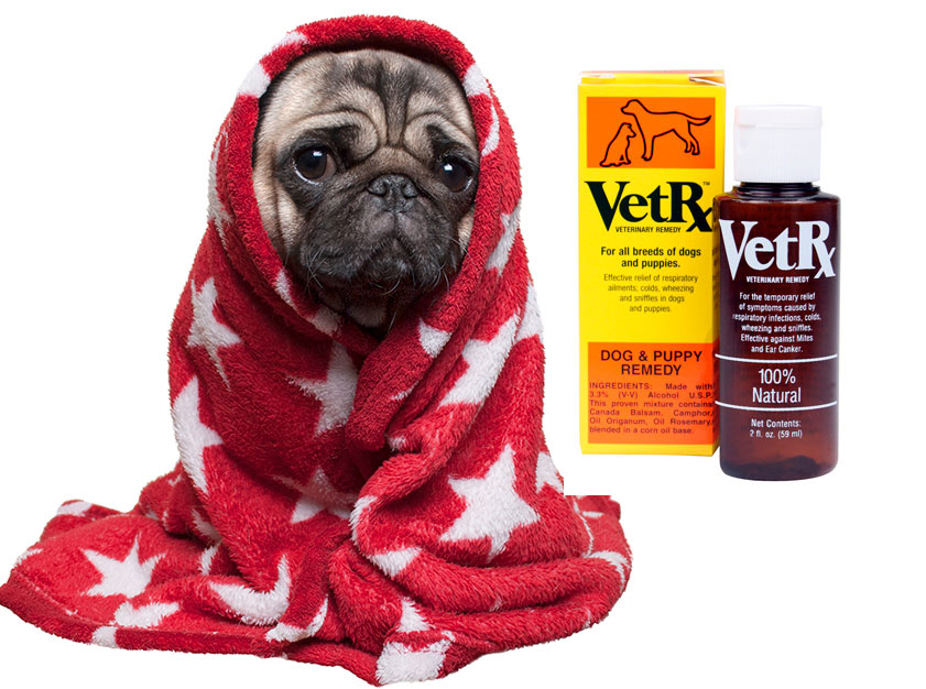 Vetrx dog and puppy aid