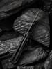 WE Knife CO. Black Void Opus Black Titanium Carbon Fiber (2010V-1) open frame