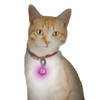 Nite Ize PetLit Collar Light Jewel Pink (PCL02-03-12JE)