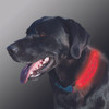 Nite Ize Nite Dawg LED Collar Cover Grey (NDCC-03-09)