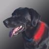 Nite Ize Nite Dawg LED Collar Cover Grey (NDCC-03-09)