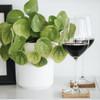 ChopValue Charcuterie & Wine Set (PS30020101) - coasters