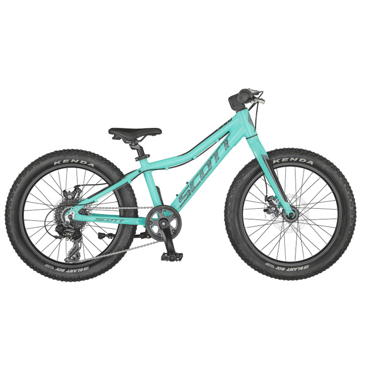"""Scott Roxter 20"""" Teal Blue Bike (2021) - 5 to 8 Years old"""