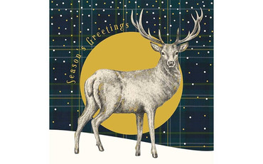 The Art File Stag on Check Christmas Card Pack