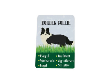 Morning Cuppa Border Collie Metal Magnet