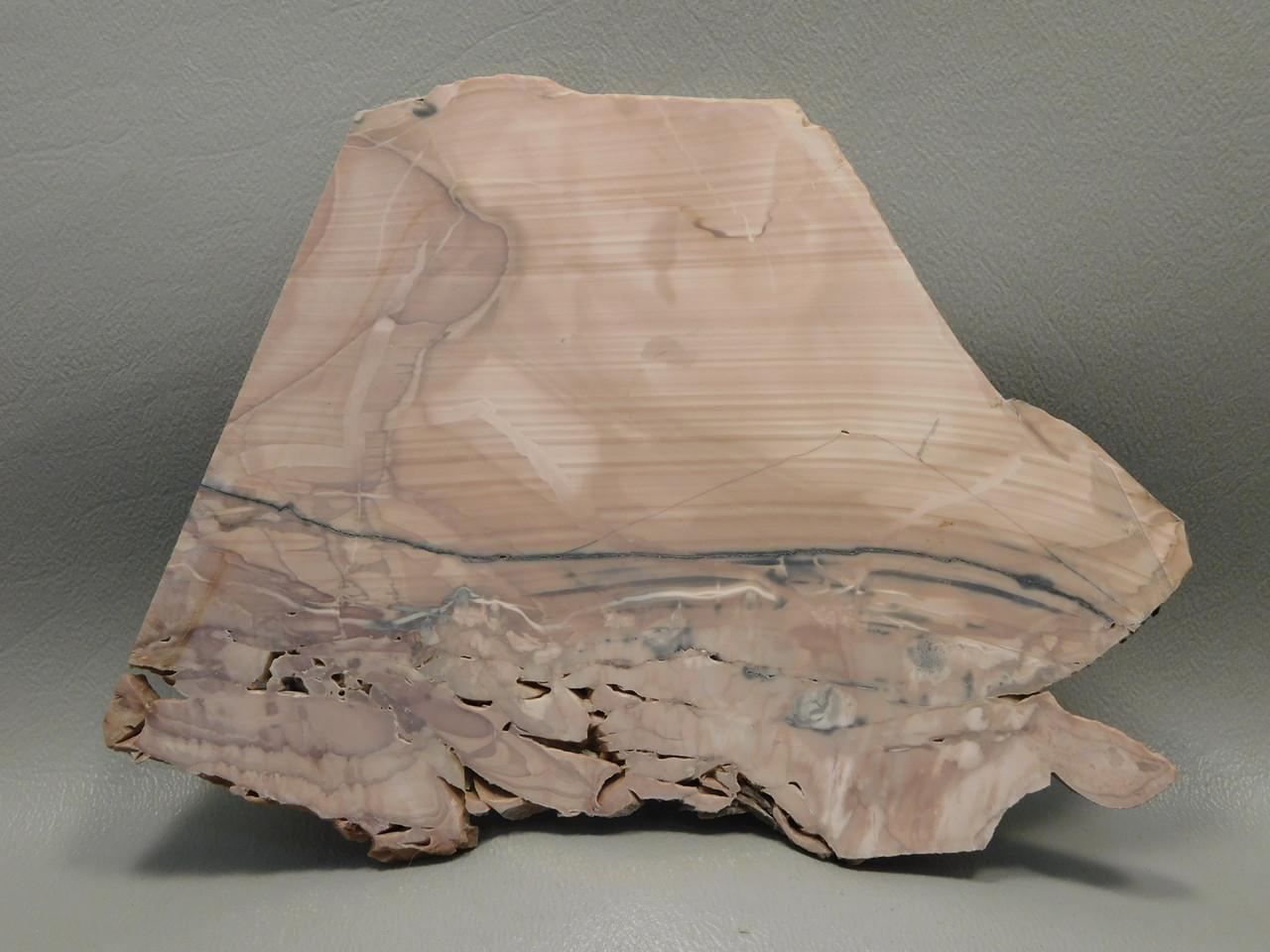 Willow Creek Picture Jasper Rough Rock Stone Slab Lapidary Idaho #O2