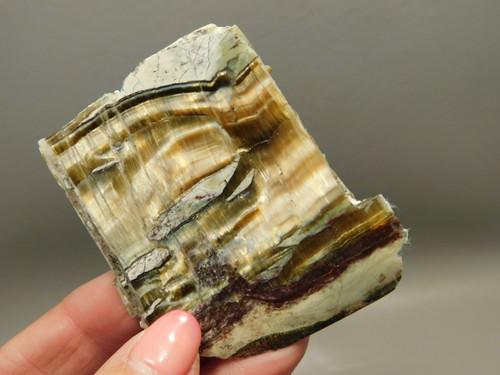 Arizona Pietersite Polished Stone Slab Chatoyant Tiger Eye #O4