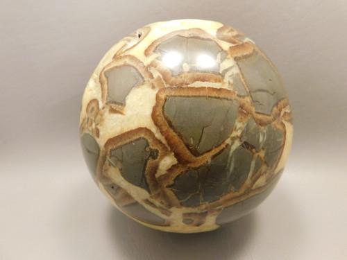 Septarian Nodule Stone Sphere 4 inch Yellow Crystal Vug Rock Utah #O1
