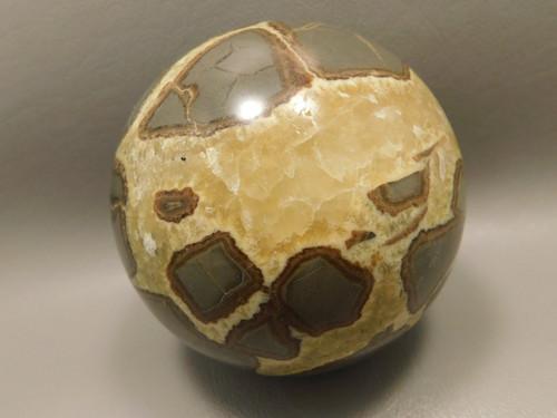Septarian Nodule Sphere Stone 3.25 inch Mineral Ball Utah Rock #O5