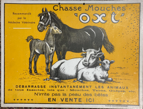 Original point of purchase cartone advertising livestock and horses for sale