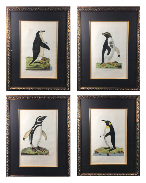 Set of Four Penguins by Miller~Shaw