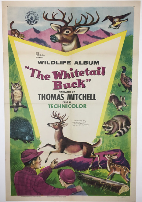The Whitetail Buck Movie Poster