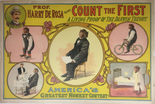Prof. Harry De Rosa Presents Count The First
