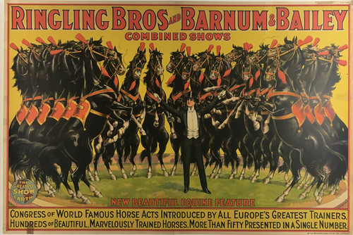 Ringling Bros Barnum & Bailey New Beautiful Equine Feature