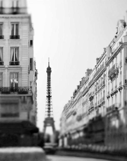 Telik Tracey Alba Paris fotografia cm102X80 Immagine su CARTA TELA PANNELLO CORNICE Verticale