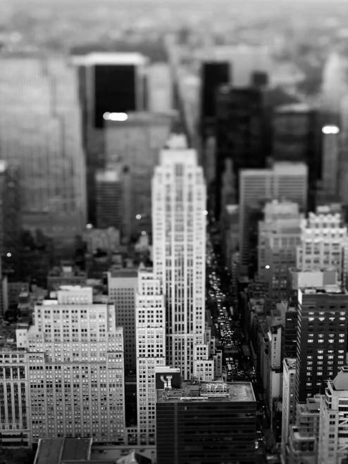 Telik Tracey Fifth Ave NYC World Culture cm111X84 Immagine su CARTA TELA PANNELLO CORNICE Verticale
