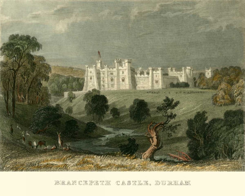 Allom T. Castello Brancepeth, Durham europeo cm36X45 Immagine su CARTA TELA PANNELLO CORNICE Orizzontale