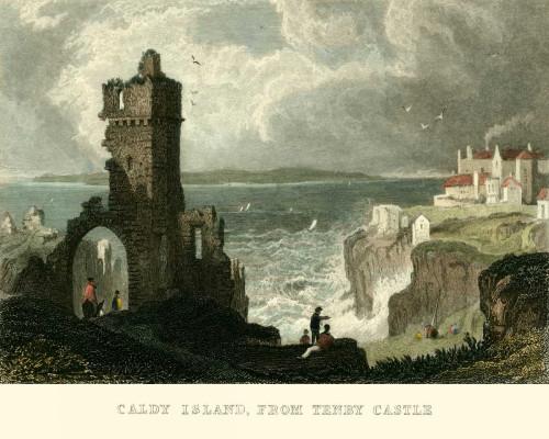 Allom T. Caldey, dal Castello di Tenby europeo cm36X45 Immagine su CARTA TELA PANNELLO CORNICE Orizzontale