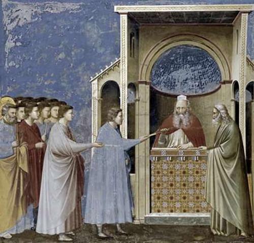 Giotto Virgins Proci che presentano i loro Canne museo cm80X84 Immagine su CARTA TELA PANNELLO CORNICE Orizzontale