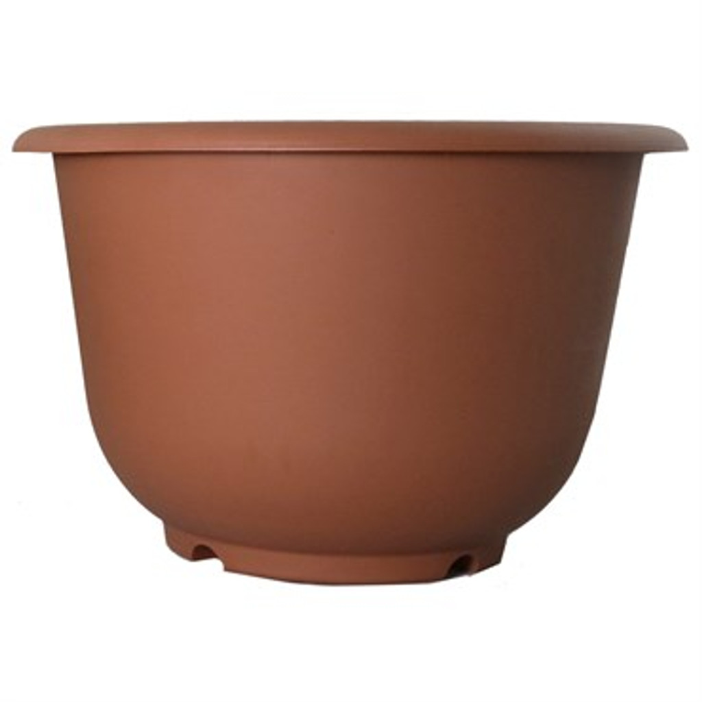"""Planter Rolled Rim Terracotta 14"""" and 16"""""""