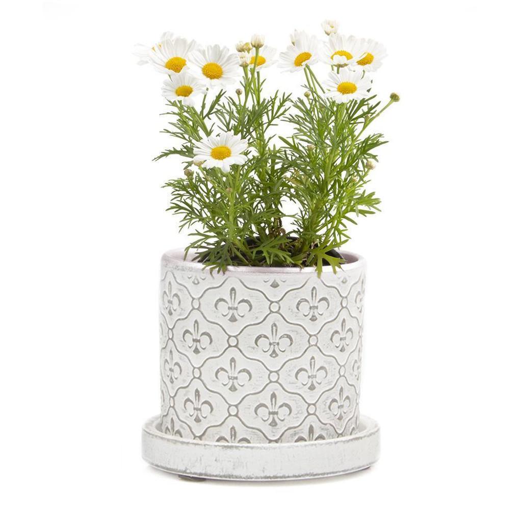 White Fleur De Lis