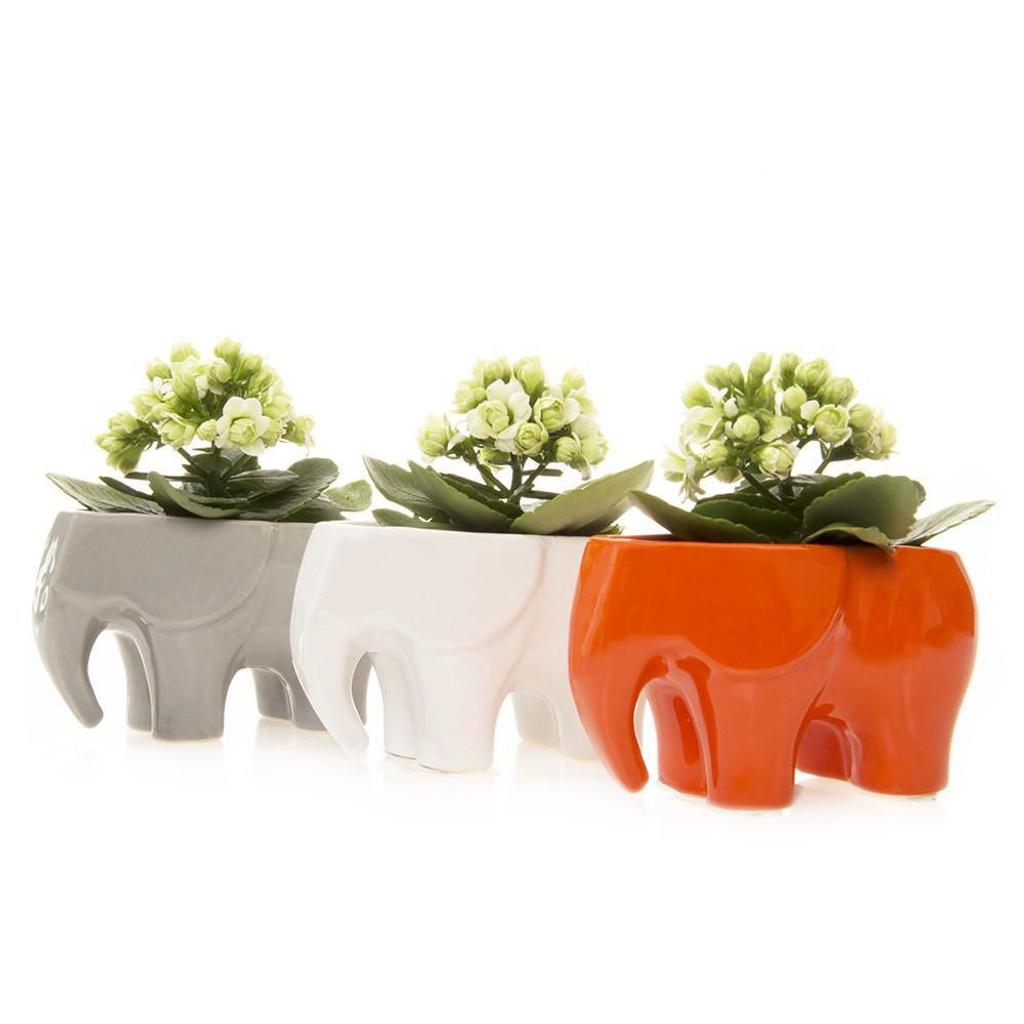 "Ceramic Elephant Pot 3.5"""