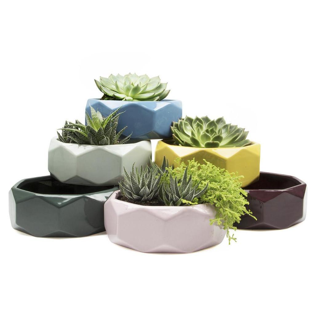 """Ceramic Discus Planter 2.75"""""""