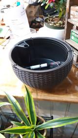 Algreen Hanging Basket Rattan