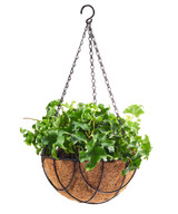 Hanging Wire Basket with Coconut Fiber Liner 12""
