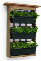 Planter Vertical Garden with 3 Containers