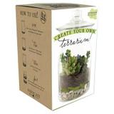Do-It-Yourself Terrarium Kit