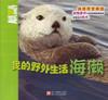 Animal Planet: My Wild Life, Sea Otters我的野外生活-海獭